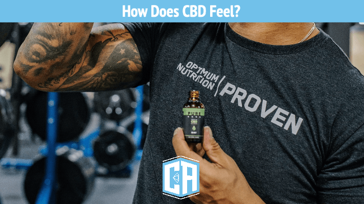 How does cbd make you feel