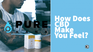 Blog header for How does CBD make you feel