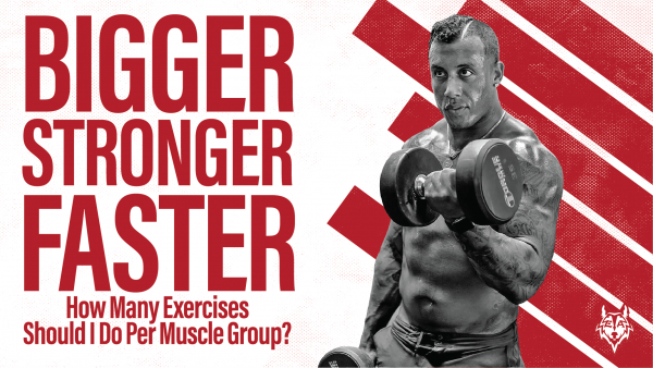 Exercises per muscle group header