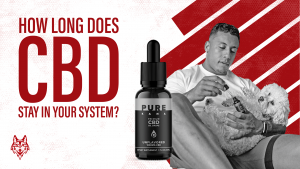How long does CBD stay in your system header