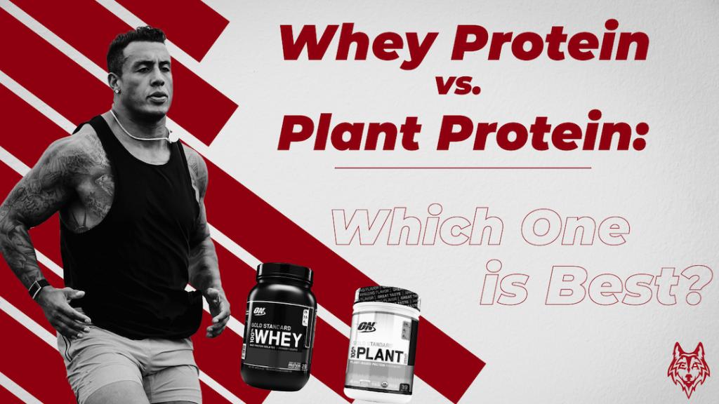 Whey vs Plant Protein